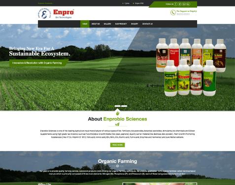 web development company in nashik